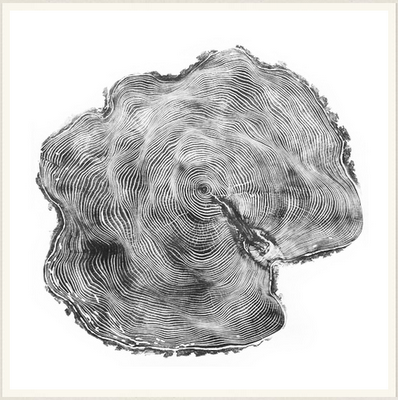 tree-imprint2
