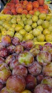 FM plums